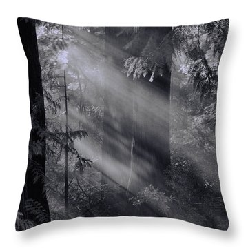 Let There Be Light Throw Pillow by Don Schwartz