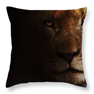 Throw Pillow featuring the photograph Lion by Christine Sponchia