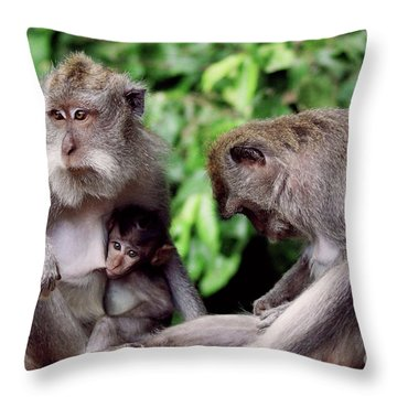 Long Tailed Macaques  Throw Pillow