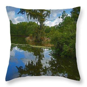 Louisiana  Bald Cypress Tree Throw Pillow