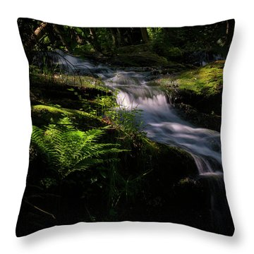 Lynn Mill Waterfalls Throw Pillow