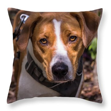 Mikey Throw Pillow