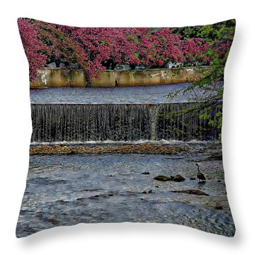 Mill River Park Throw Pillow
