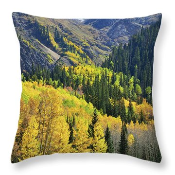 Throw Pillow featuring the photograph Million Dollar Highway  by Ray Mathis