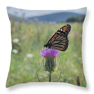 Mountain Meadow Monarch Throw Pillow