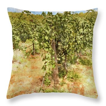 Napa Vineyard In The Spring Throw Pillow