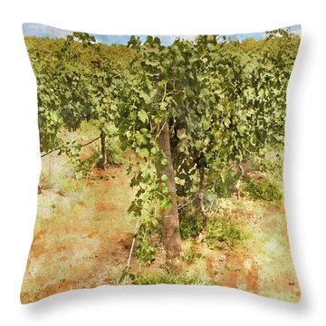 Napa Vineyard In The Spring Throw Pillow