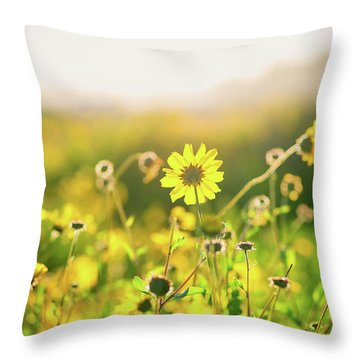 Nature's Smile Series Throw Pillow by Joseph S Giacalone