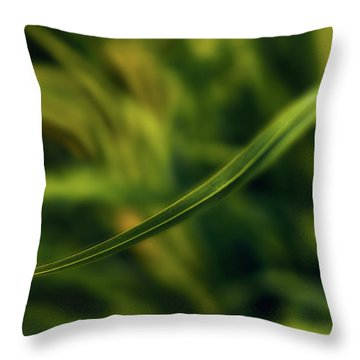 Natures Way Throw Pillow
