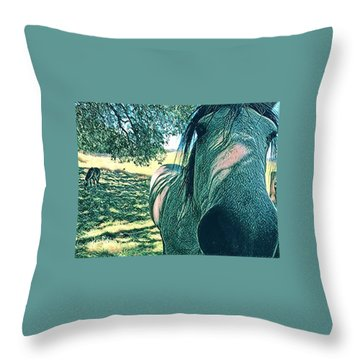 Nosey Belle Throw Pillow