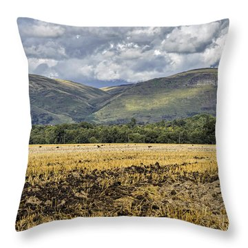 Ochil Hills Throw Pillow by Jeremy Lavender Photography