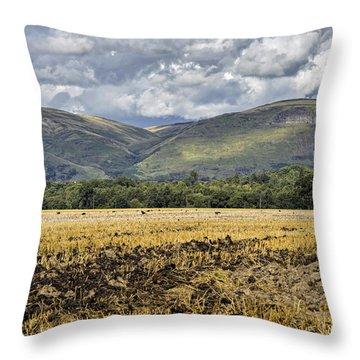 Ochil Hills Throw Pillow