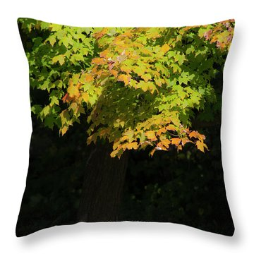 October Colors Throw Pillow