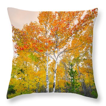 Throw Pillow featuring the photograph Only A Memory by Tim Reaves
