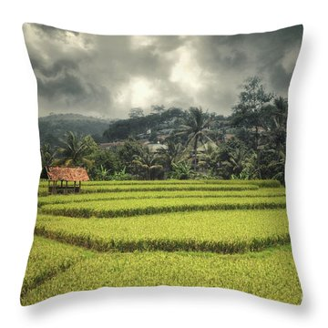 Throw Pillow featuring the photograph Paddy Field by Charuhas Images