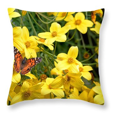 Throw Pillow featuring the photograph Painted Lady by Lila Fisher-Wenzel
