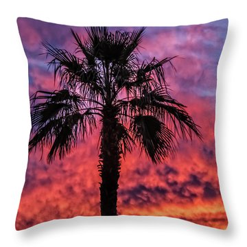 Throw Pillow featuring the photograph Palm Tree Silhouette by Robert Bales
