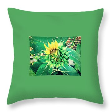Peeping Sunflower Throw Pillow
