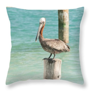 Pelican At Isla Mujeres Throw Pillow