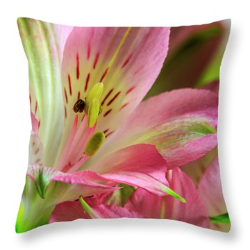 Throw Pillow featuring the photograph Peruvian Lilies In Bloom by Richard J Thompson