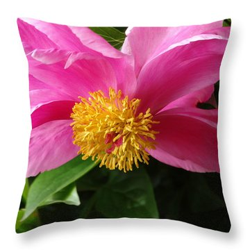 Pink Peony Throw Pillow by Rebecca Overton