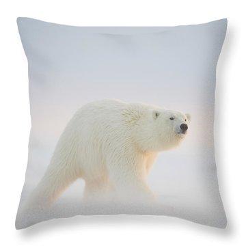 Polar Bear  Ursus Maritimus , Young Throw Pillow by Steven Kazlowski
