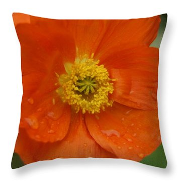 Throw Pillow featuring the photograph Poppy by Heidi Poulin