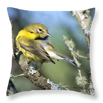 Prairie Warbler Throw Pillow