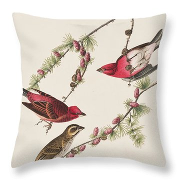 Purple Finch Throw Pillow by John James Audubon