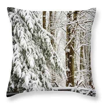 Throw Pillow featuring the photograph Rail Fence And Snow by Thomas R Fletcher