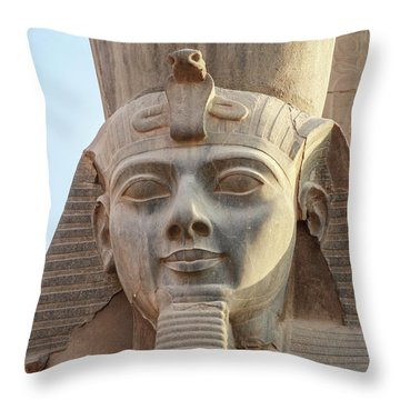 Throw Pillow featuring the photograph Rameses by Silvia Bruno