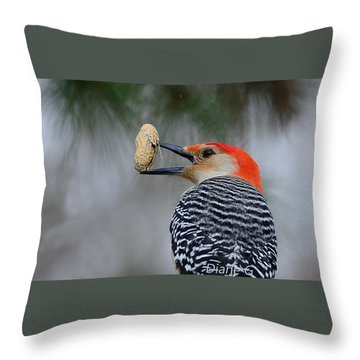Red-bellied Woodpecker Throw Pillow by Diane Giurco