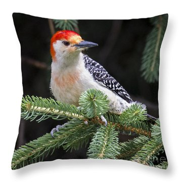Throw Pillow featuring the photograph Red-bellied Woodpecker by Ricky L Jones