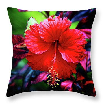 Red Hibiscus 2 Throw Pillow by Inspirational Photo Creations Audrey Woods