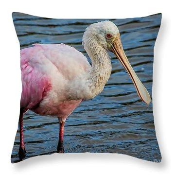 Roseate Spoonbill 1 Throw Pillow