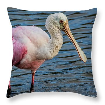 Roseate Spoonbill 1 Throw Pillow