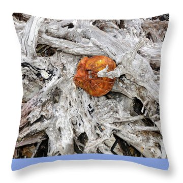 Throw Pillow featuring the photograph Seattle Morning by David Lee Thompson