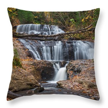 Sable Falls Throw Pillow