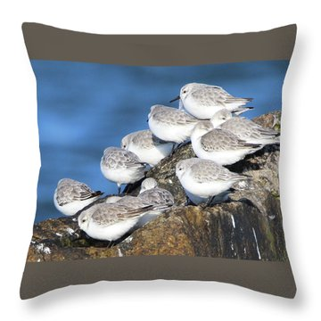 Sanderling Westhampton New York Throw Pillow by Bob Savage