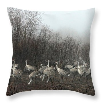 Sandhill Cranes And The Fog Throw Pillow by Farol Tomson