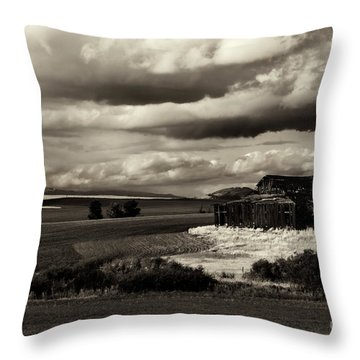 Throw Pillow featuring the photograph Seen Better Days by Mike Dawson