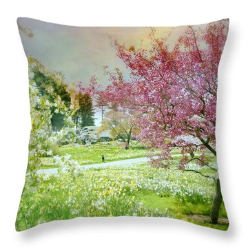 Throw Pillow featuring the photograph Solitude by Diana Angstadt