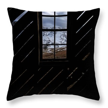 Sound Democrat Mill Throw Pillow