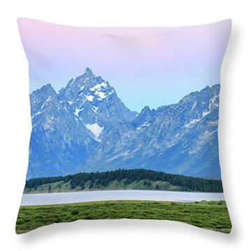 Spotless Sunrise Throw Pillow