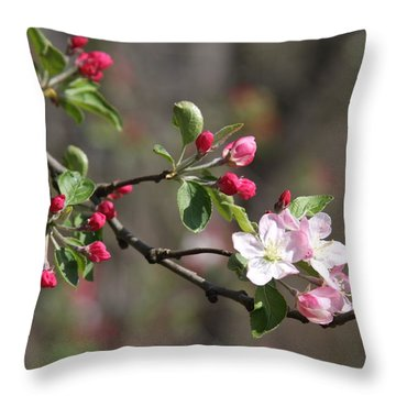 Throw Pillow featuring the photograph Blossom And Hope by Vadim Levin