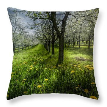 Spring Colors Throw Pillow by Bruno Santoro