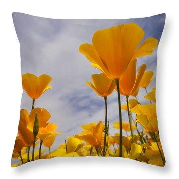 Springtime Poppies  Throw Pillow