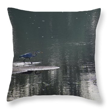 Throw Pillow featuring the photograph Stalker  by Skip Willits