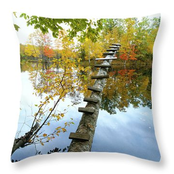 Stepping Tree - Northwoods Wisconsin Throw Pillow