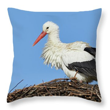Throw Pillow featuring the photograph Stork On A Nest by Nick Biemans